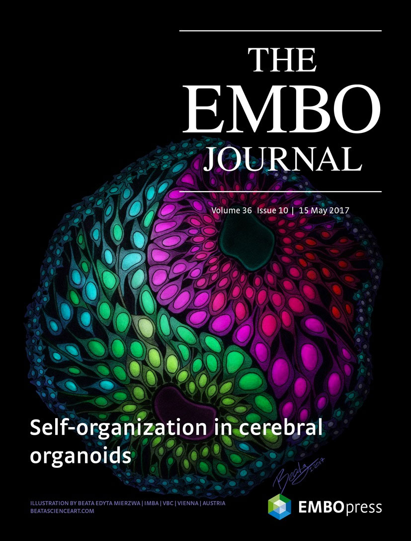 EMBO cover