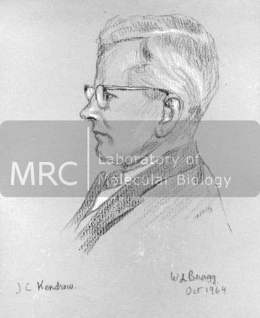 Pencil drawing of John Kendrew by William Lawrence Bragg, October 1964.