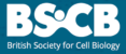 BSCB Logo