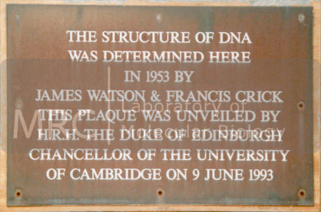 Plaque on the Austin Wing entrance to the Old Cavendish building, commemorating the 40th anniversary of the elucidation of the structure of DNA. Francis Crick and James Watson, working in the MRC unit, shared an office in this building.