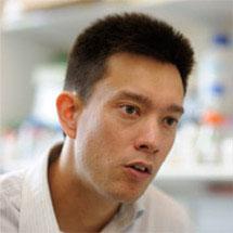 Jason Chin (news profile)