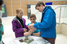 children looking at brain model