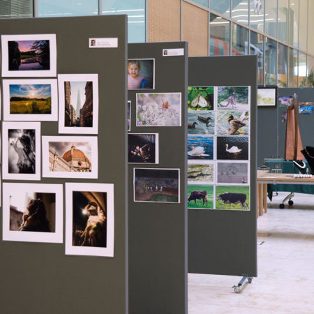 LMB Art Show display