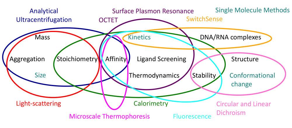 Biophysical Techniques Overview