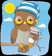 An Owl with caffeine