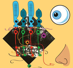 Lagnado - Smell Vision Image