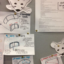 Mouse House challenge designs