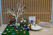 craft group display
