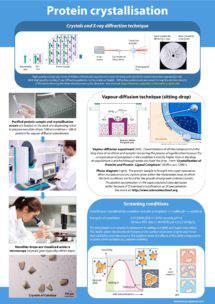 Poster Protein Crystallization