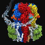 Structure of the human 132 GABAA receptor in a lipid nanodisc