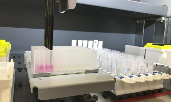 COVID-19 sample preparation at the UK Biocentre.