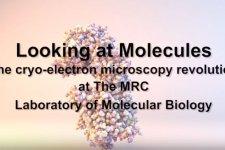 Electron cryo-microscopy film