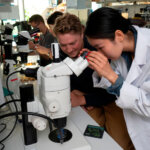 An LIYSF student viewing fly larvae