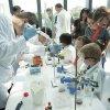 MRC Laboratory of Molecular Biology Open Day 2017