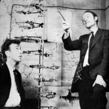 an analysis of the double helix by james watson Rosalind franklin and the double helix  the famous double helix but before her analysis was complete, she was beaten to the punch by james watson and.