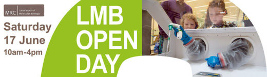 LMB open day 2017 banner
