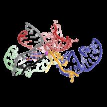 RNA at the core of the spliceosome.